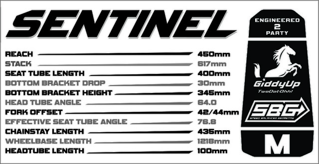 Transition Sentinel Geometry Chart