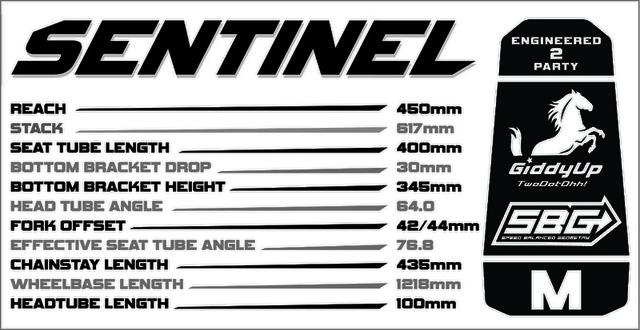 Transition Sentinel Geometry Chart