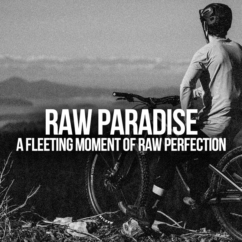 Mega Feature - Raw Paradise